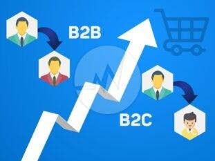 b2b b2c ecommerce