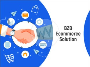 B2B Ecommerce Solution