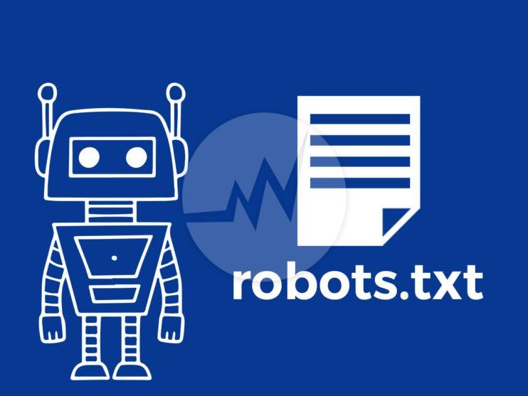 Robots txt and seo
