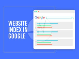 Website Index in Google