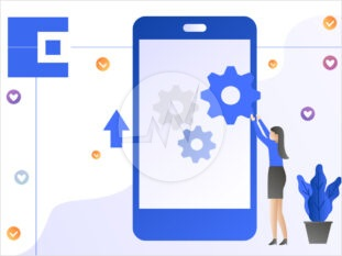 Mbile App Maintenance Plan